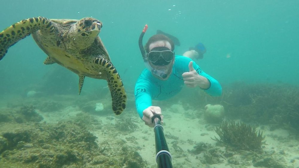 Diving with Turtles in Nosy Be, Madagascar