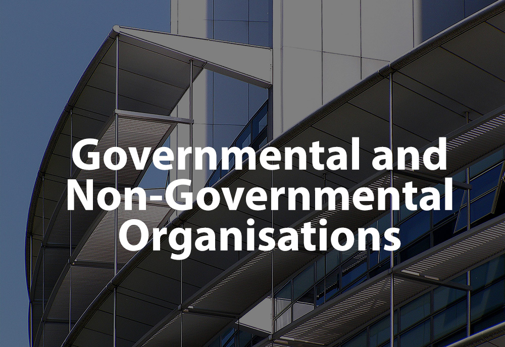 Governmental and Non-Governmental Organisations