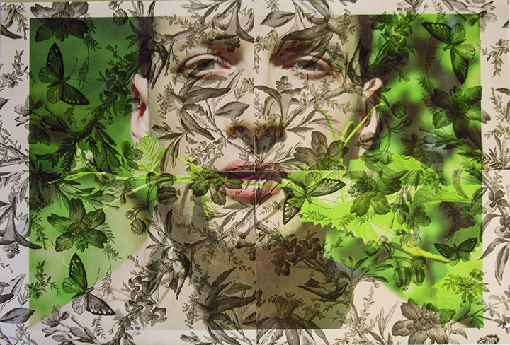 Dan Jalba face with vines Vienna (on grey Butterfly toile) 2013