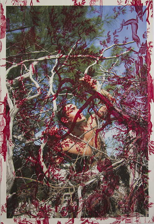 Arnaud Caizergues trees North Captive (on red mythic toile) 2013