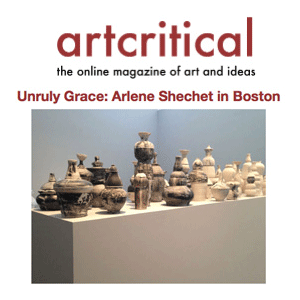 "[Shechet's] beautifully paced survey show at the Institute of Contemporary Arts, Boston, ""All At Once,"" gathers together two decades of deft, imaginative and fearless work. -Sascha Behrendt Full Article"