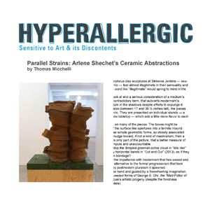 Brimming with knockabout energy, Arlene Shechet's polymorphous clay sculptures...feel almost illegitimate in their sensuality and humor. - Thomas Micchelli Full Article