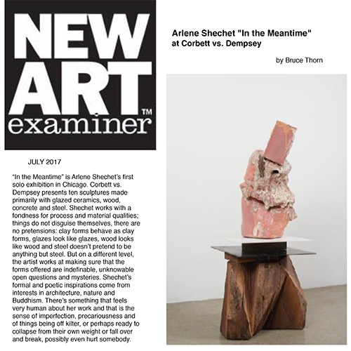 Shechet works with a fondness for process and material qualities; things do not disguise themselves, there are no pretensions: clay forms behave as clay forms, glazes look like glazes, wood looks like wood and steel doesn't pretend to be anything but steel. But on a different level, the artist works at making sure that the forms offered are indefinable, unknowable open questions and mysteries. ...  There is certainly a lot of ambiguity in art these days, as if our cultures no longer care to focus or even attempt to make sense out of anything at all. Shechet is different; she keeps chaos at bay while knowing that her subject is the poetry of unknowable and unspeakable places and languages.  -   Bruce Thorn    Full Article