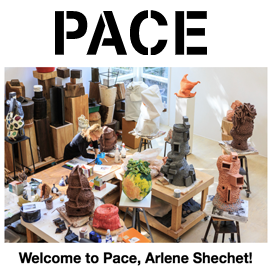 Welcome to Pace, Arlene Shechet!