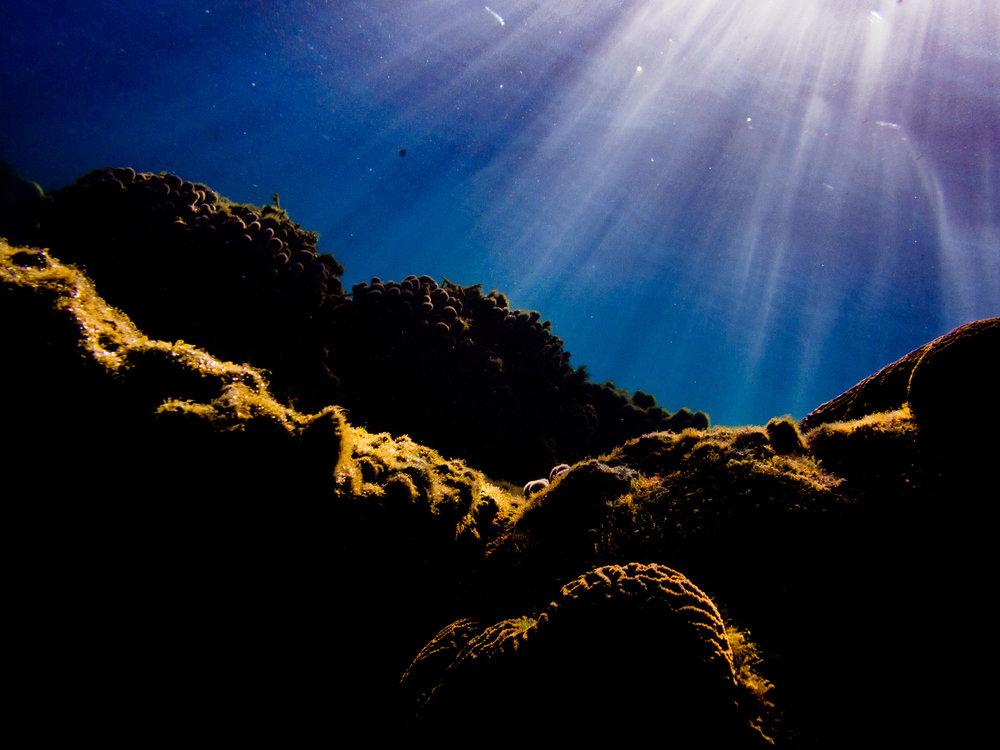 Spyrides_Kyle_Ningaloo_Reef_Sal_Salis.13.5.2016P5111104.jpg