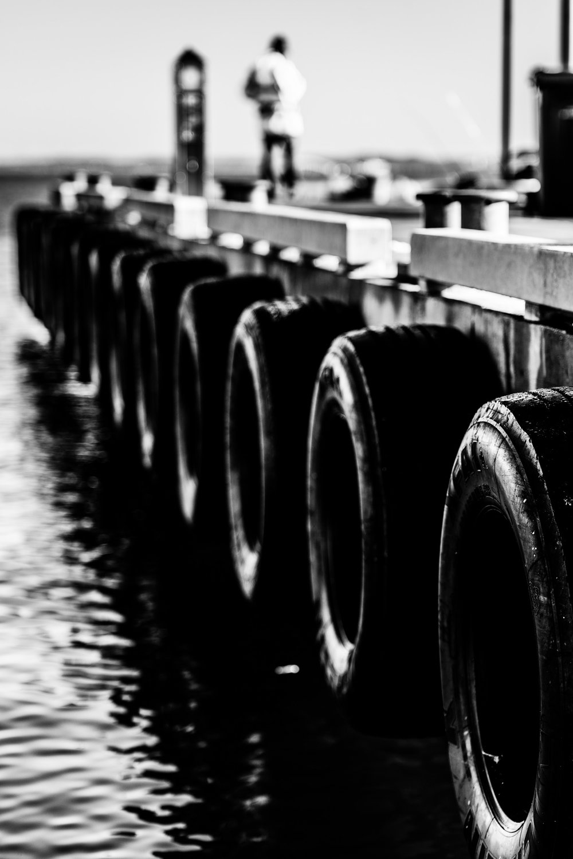 Spyrides_Kyle_Dolphin_Swimming_Rockingham_DSC2634.jpg