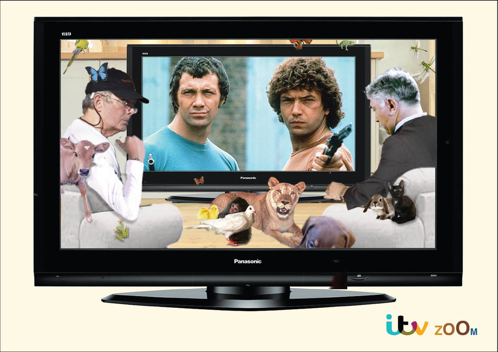 ITV Panasonic image Prffesionals.jpg