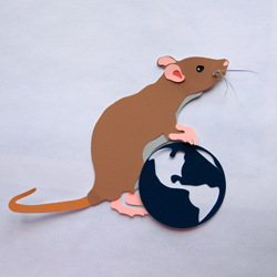 NPR: A World Without Humans Looks A Lot Like A Rat Race