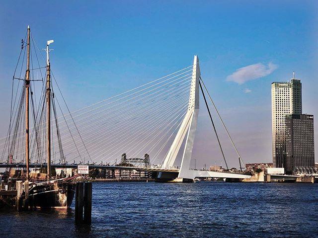 Rotterdam 🇳🇱 #erasmusbrug #holland #blue #sea #travel #work #music #mazikduo #jewishlife #classicalnext