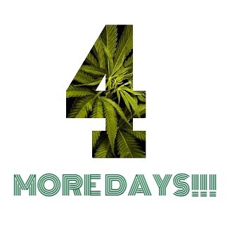Did you hear the news? The Green Door opens in 4 more days!