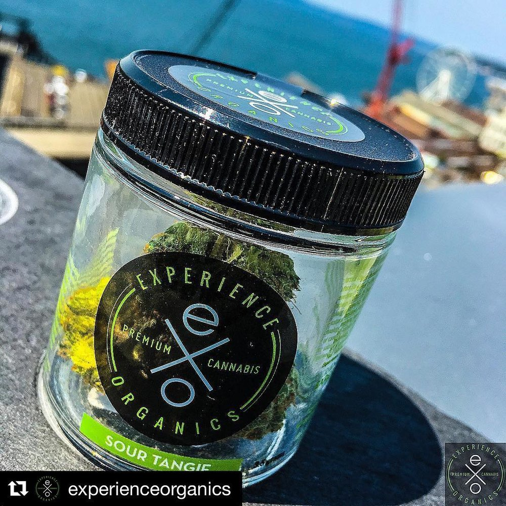 Sour tangie from  @experienceorganics  is definitely a favorite in our shop. Experience Organics is doing a vendor day at The Green Door this Friday from 11-2pm.
