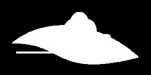 Logo_Floor Befag.png