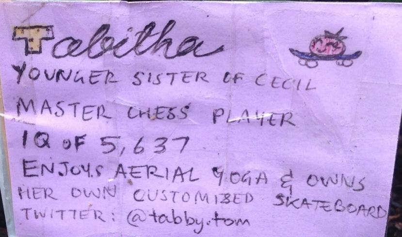 Tabitha: Younger sister of Cecil//master chess player//IQ of 5637//enjoys aerial yoga and owns her own customised skateboard//twitter @tabby.tom