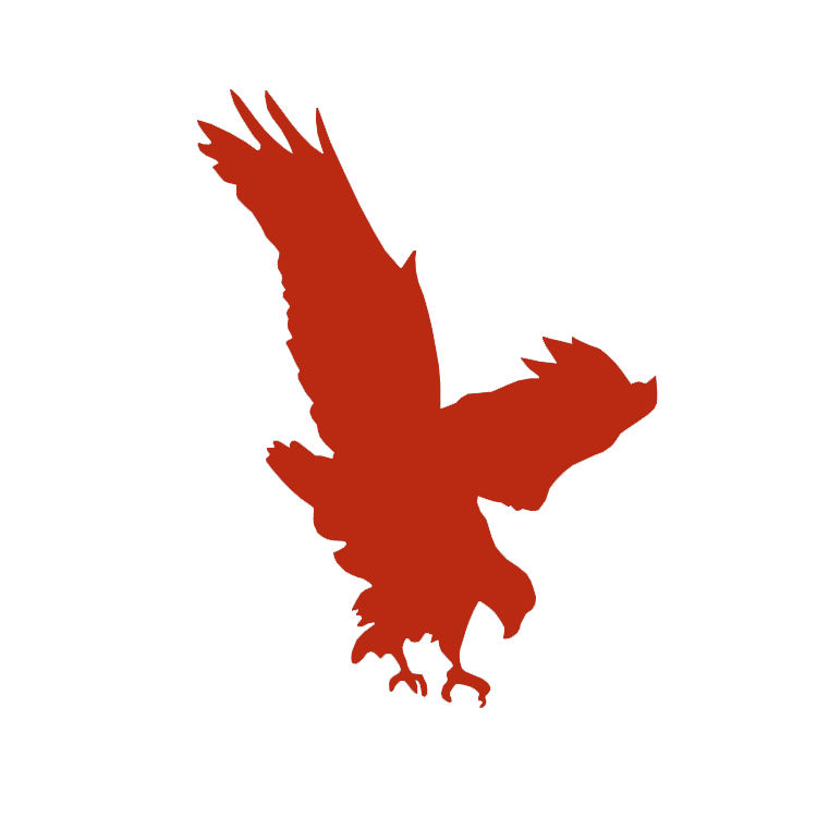 SINGLE hawk maroon white background.png
