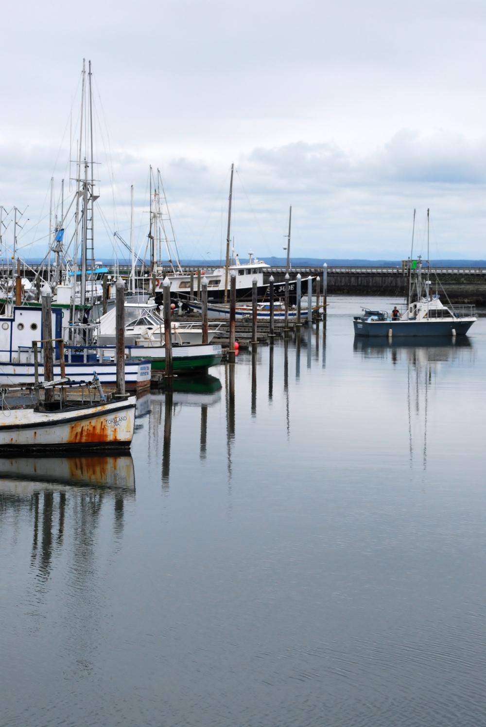 Fishing trawlers - Westport, WA