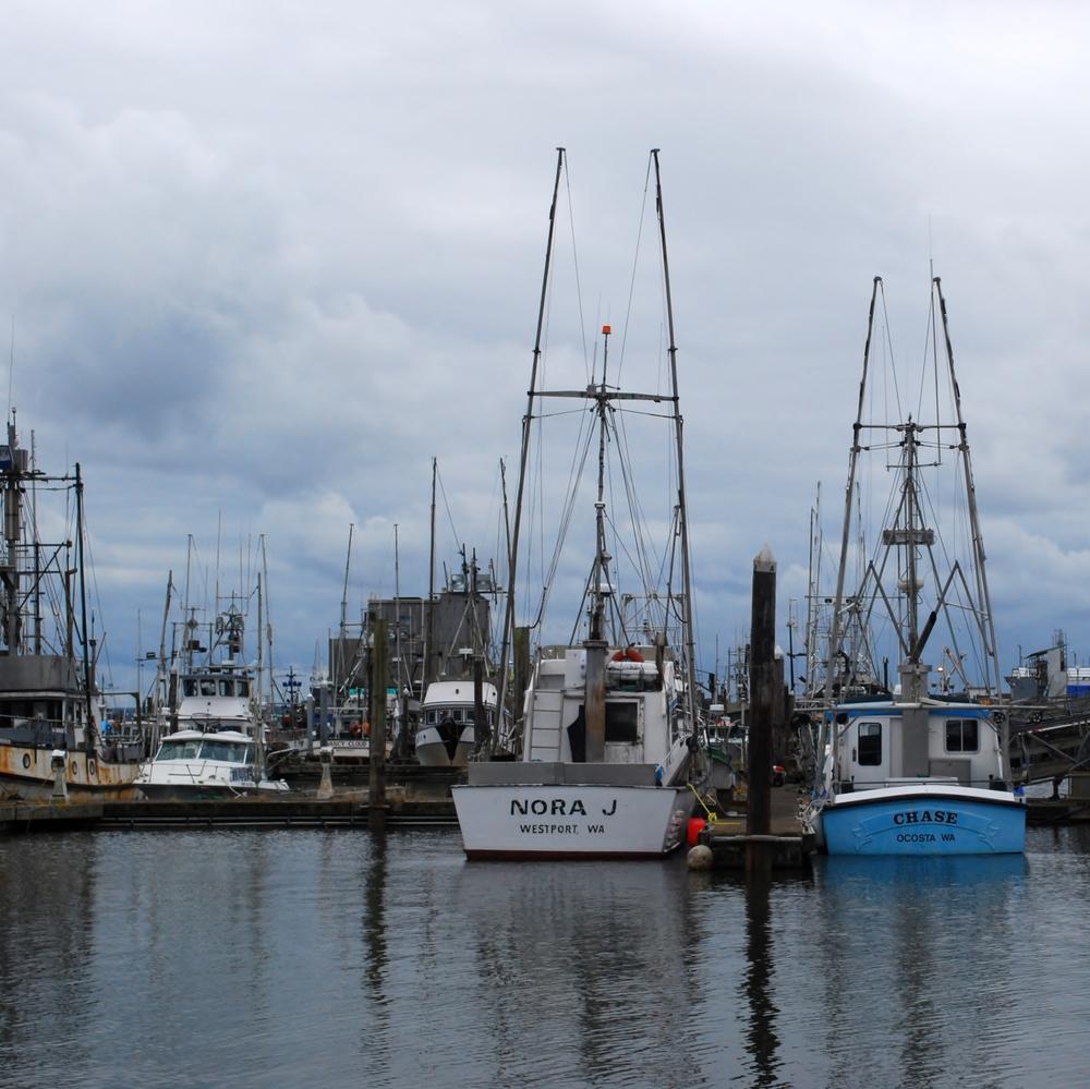 Westport Marina, WA