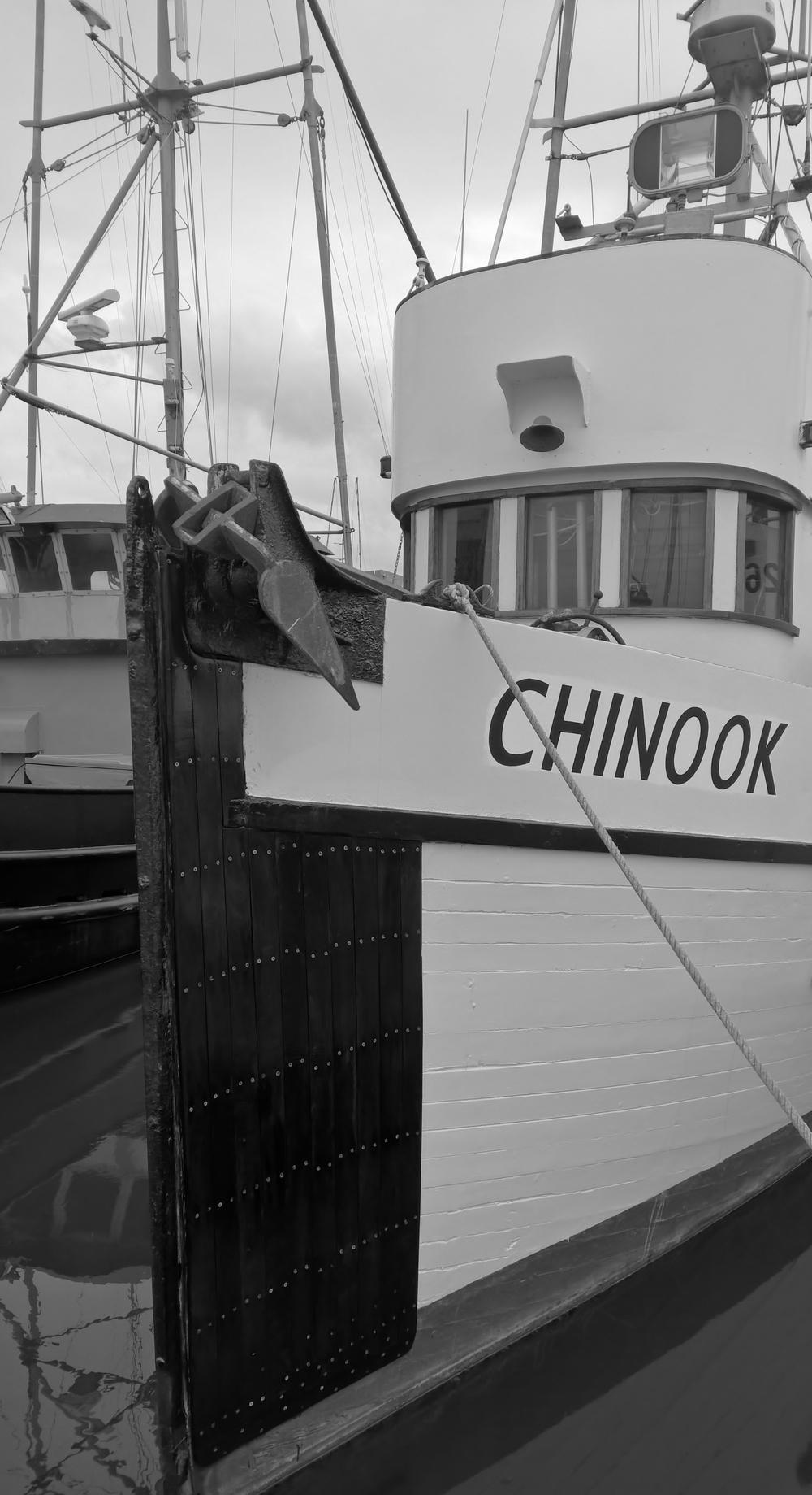Chinook - Westport, WA
