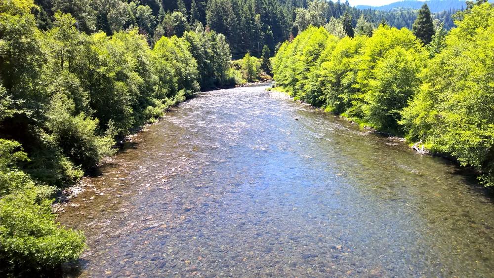 North Fork Middle Fork Willamette River - Westport, OR