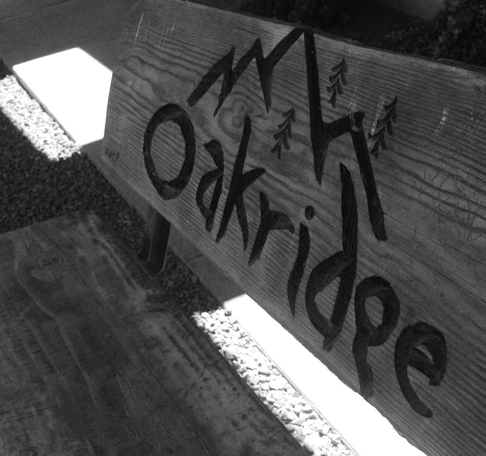 Bench at City Hall - Oakridge, OR