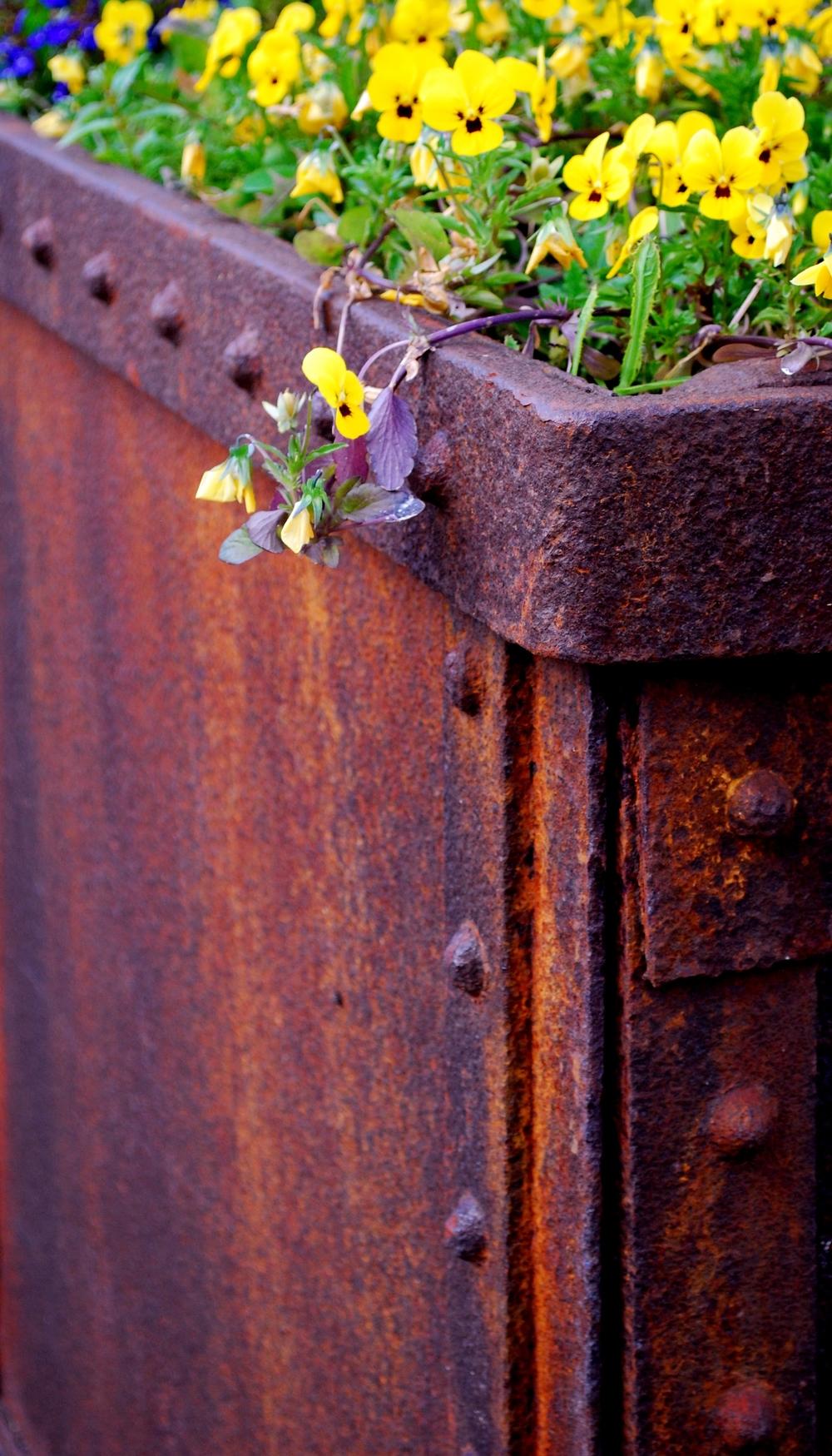 Flowers meet metal