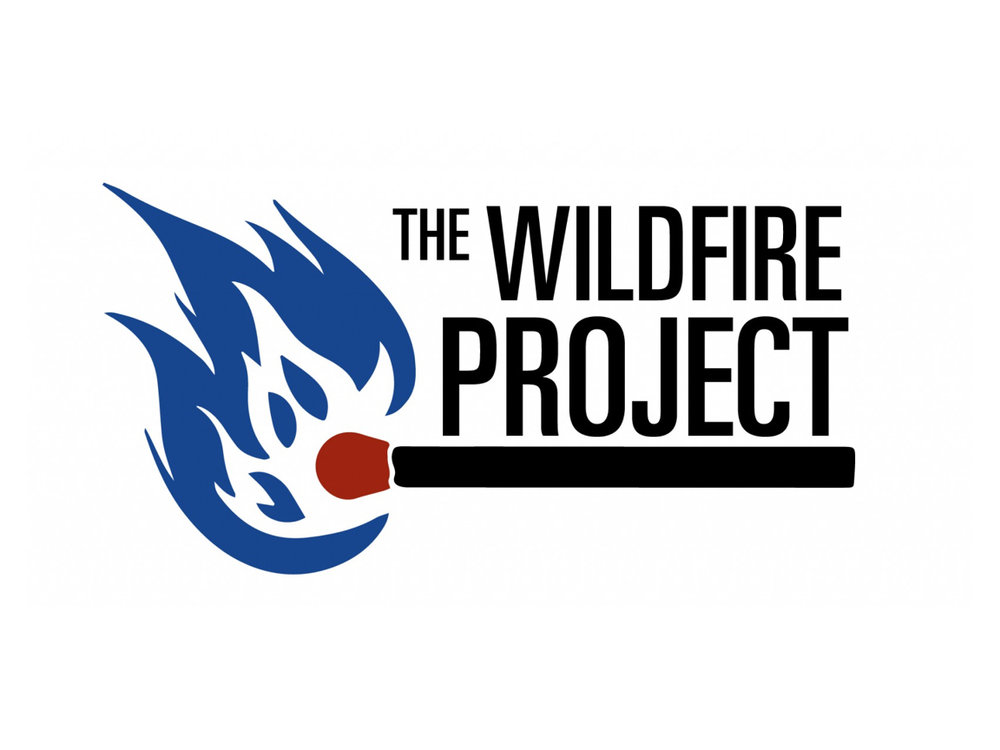 Wildfire Project.jpeg