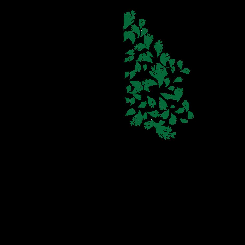 Genesis-Rehab-Logo.png