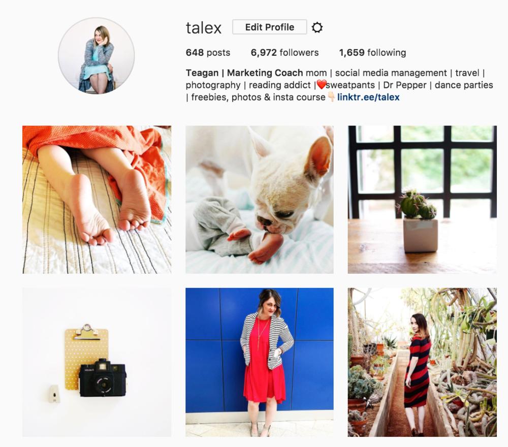 @talex instagram