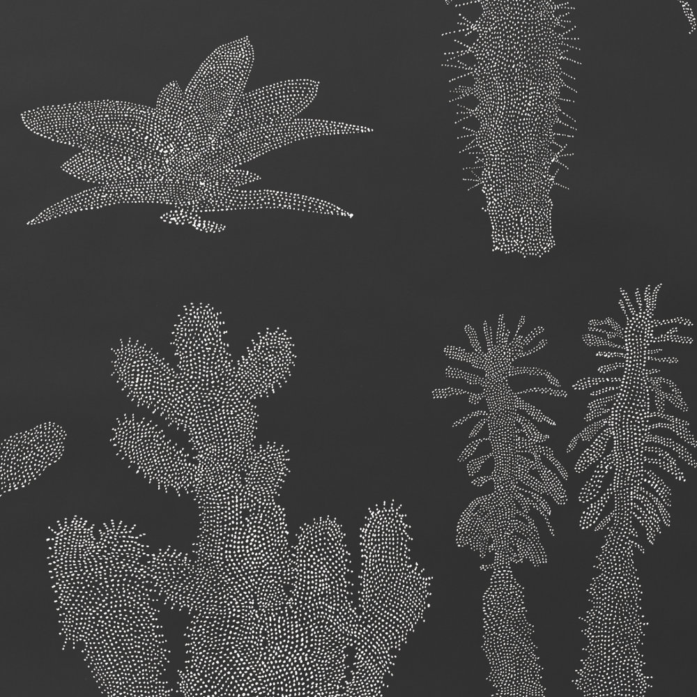 Pointy –White on Black
