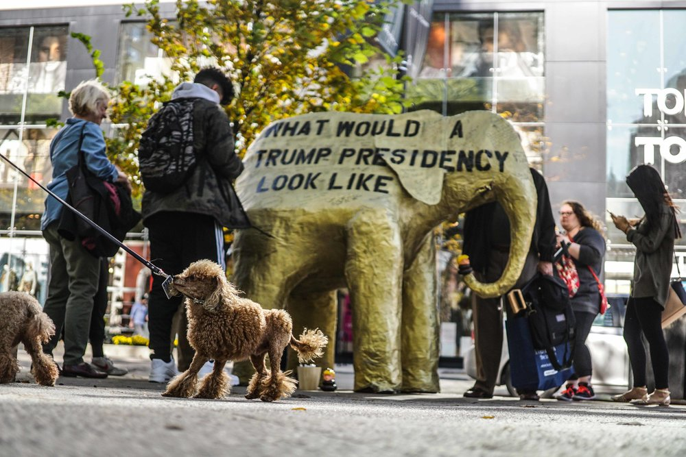 Donald Trump Donnie The Poo 2016 Birch Reincliff Golden Toilet Golden Elephant 2 street art illegal advertising political art 2017 Wheatpaste Art Graffiti Banksy Donald Trump Art 3.jpg