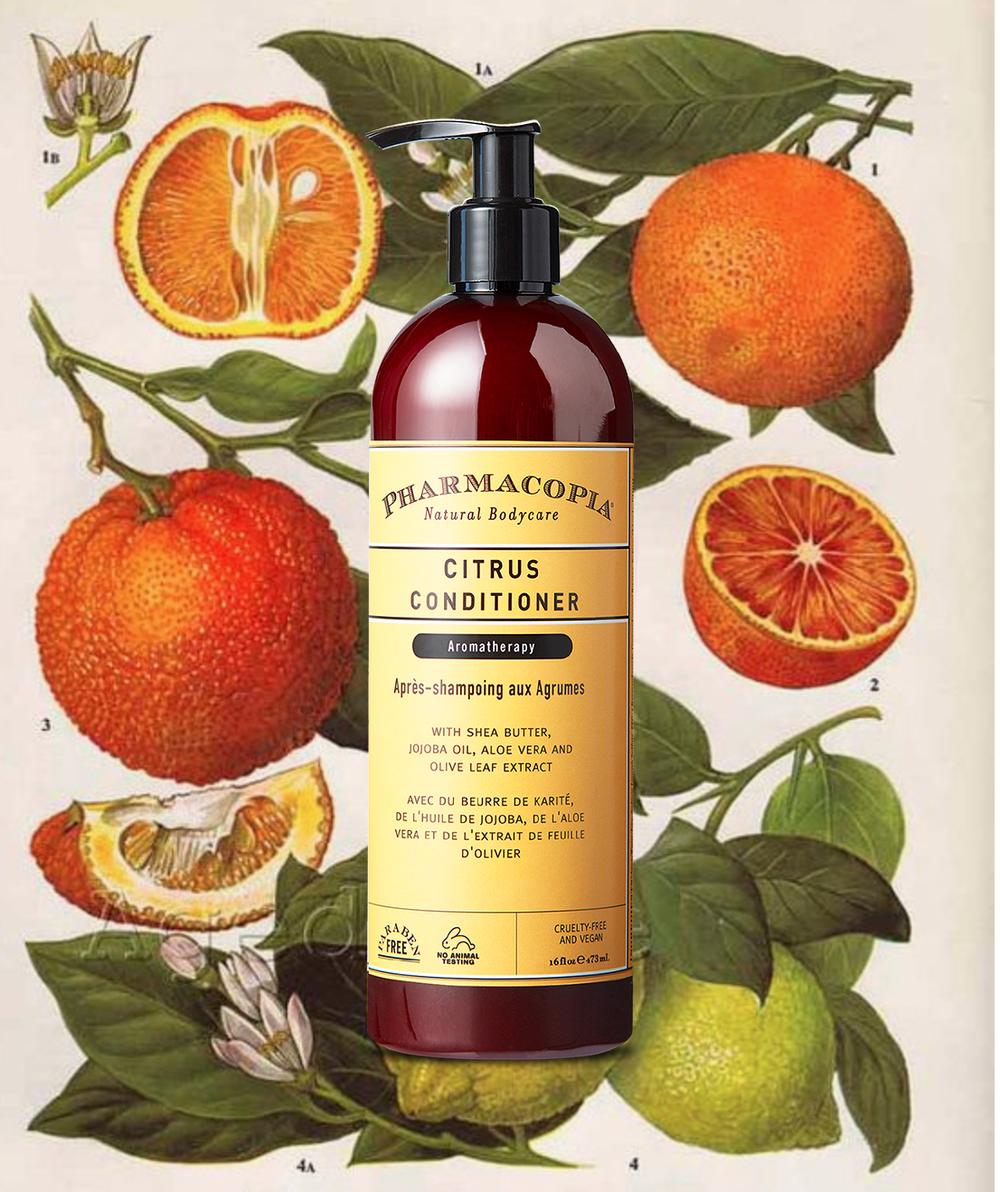 Citrus Cond botanical.png