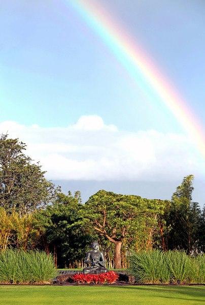 rainbow lumeriamaui.jpg