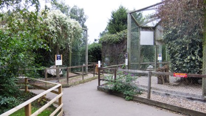 Spacious, naturalistic aviaries benefit the birds whilst clear  signage, safety barriers and level paths assist visitors .