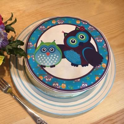 new-owl-cake.jpg