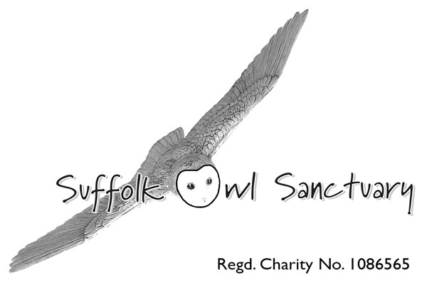 The S O S  Blog — Suffolk Owl Sanctuary