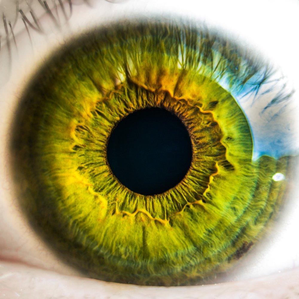 Ocular Bioimpedance