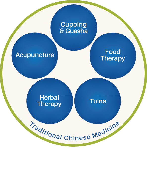 "Diagram of the elements of traditional Chinese medicine. A large green circle is labeled ""Traditional Chinese Medicine."" It has five blue circles inside of it. The five circles are labeled, clockwise from top: Cupping and Guasha, Food Therapy, Tuina, Herbal Therapy, and Acupuncture."