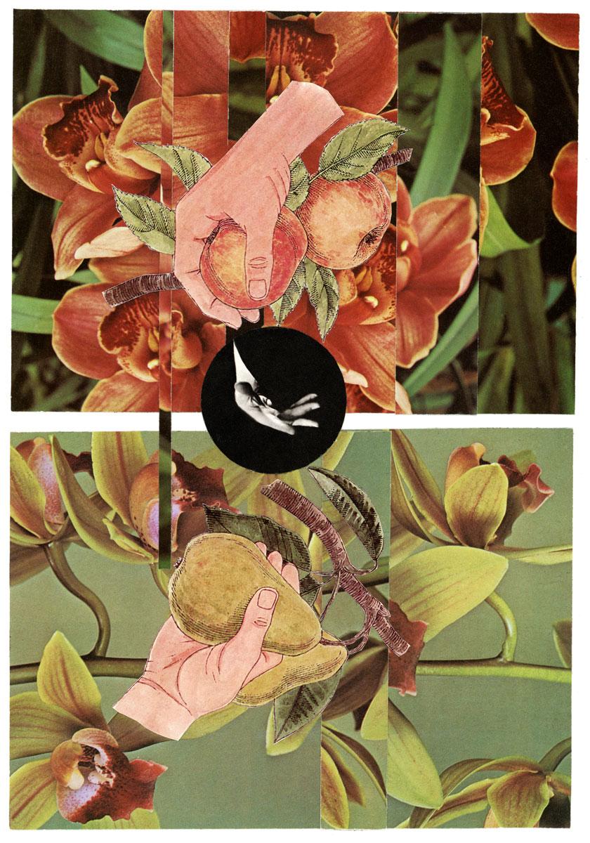 10-23-16-collage014.jpg