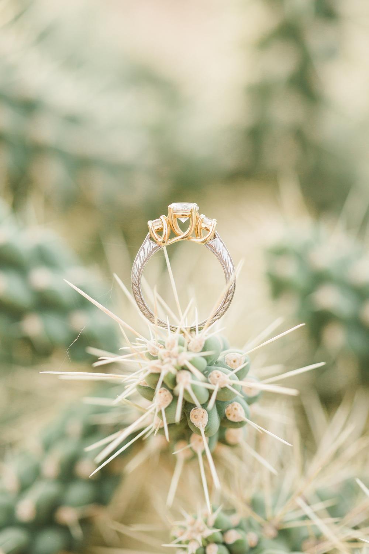 Nobert-Engagement-080.jpg