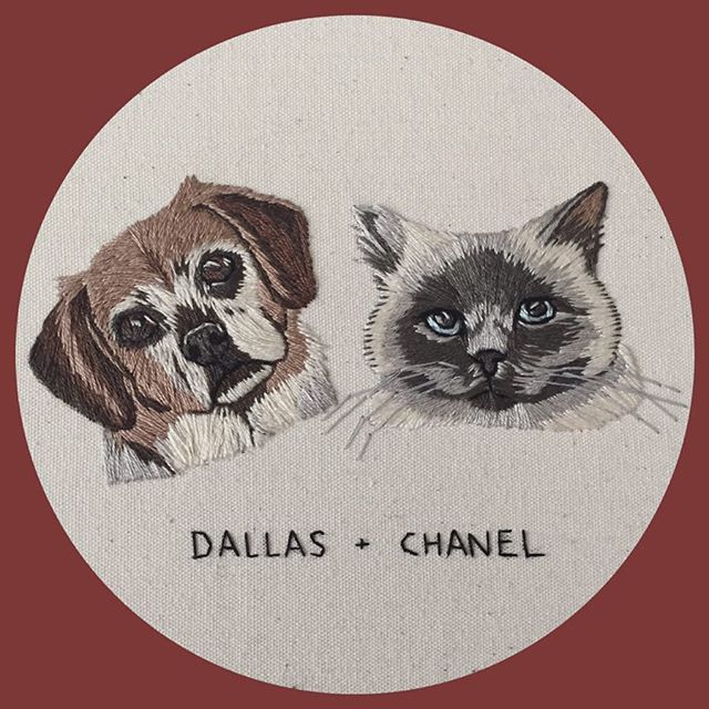 I can't believe that after three or so years of pet portraits that this was only my second hoop with a cat and a dog!?
