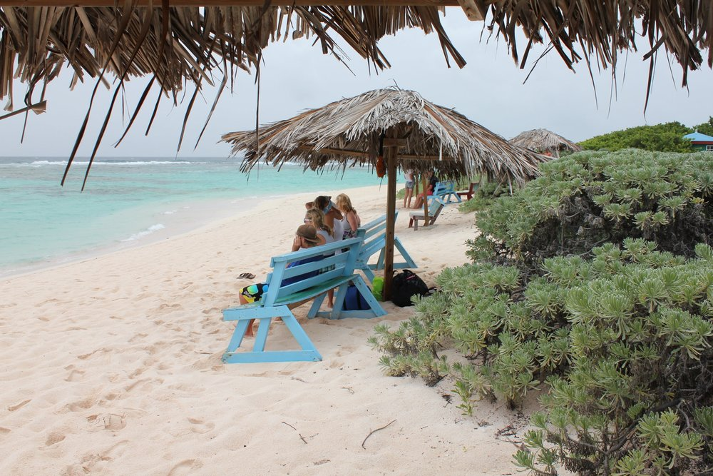 our family, on the beach, Loblolly Bay on Anegada, BVI