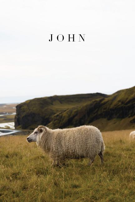 john - sheep.png