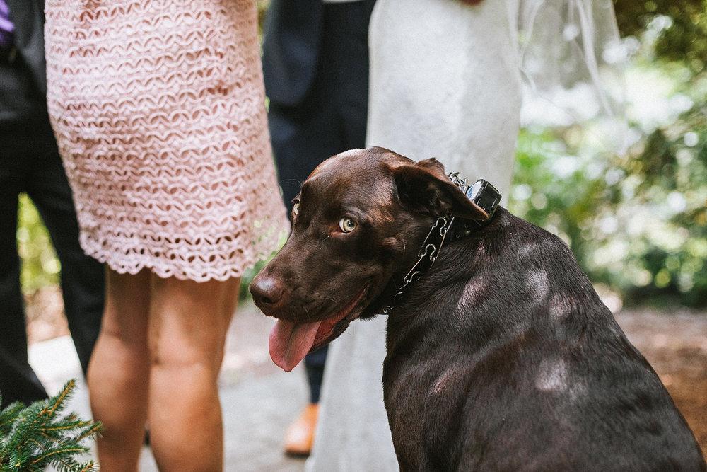 Brooke Townsend Photography - Ohio Wedding Photographer (49 of 78).jpg