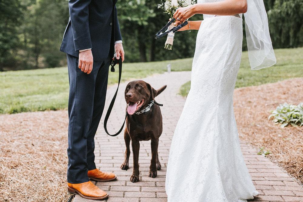 Brooke Townsend Photography - Ohio Wedding Photographer (70 of 78).jpg