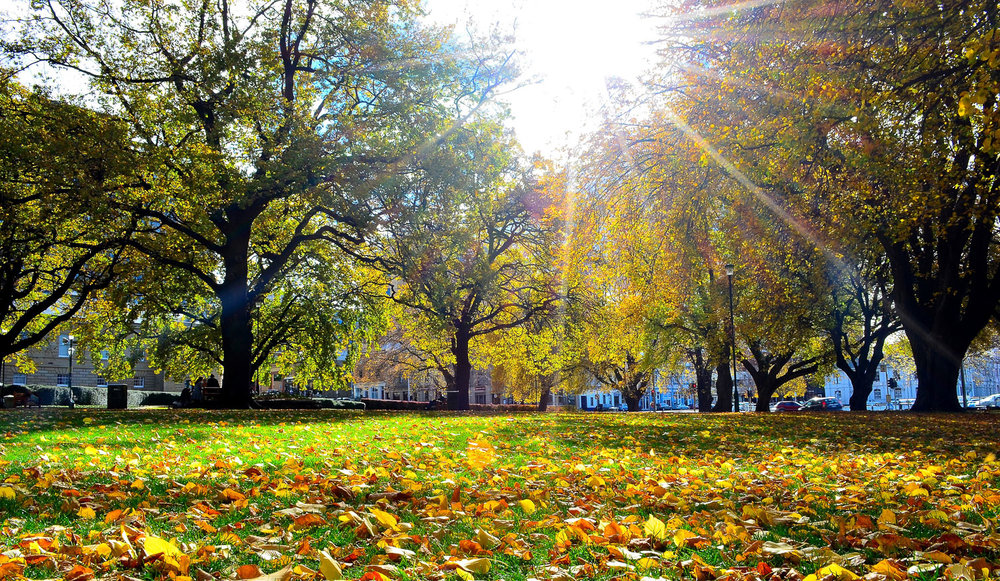 Tasmanian Photography -  Autumn In Tasmania - WILKOGRAPHY.jpg