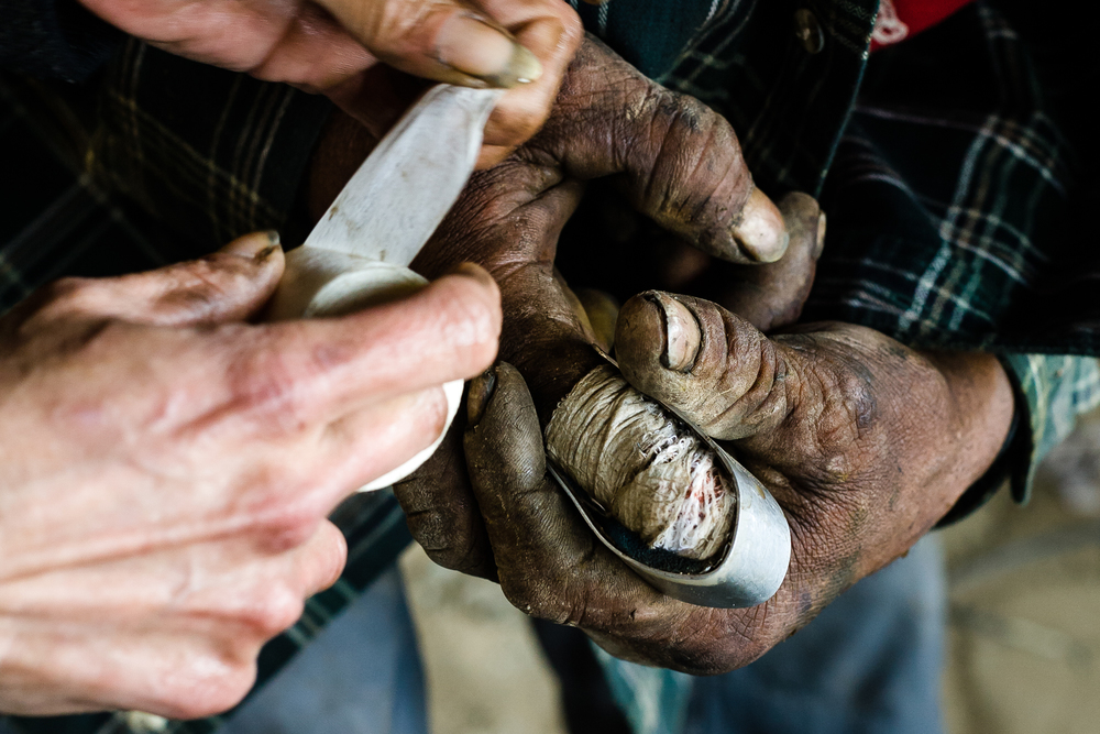 Boudreaux, another of the camp's veteran scrappers gets help reapplying a bandage and splint. Recently he lost the tip of his finger at the first joint to a scrapping accident.