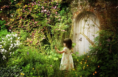 bacopa-flower_image-228x152.jpg