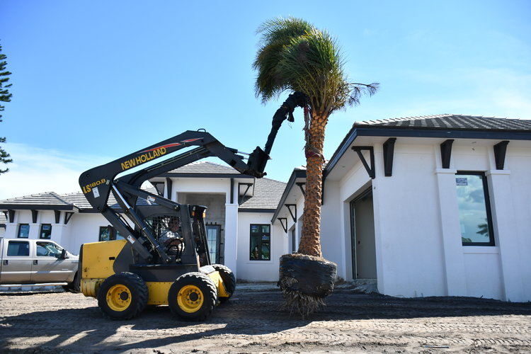 Cape Coral Landscaping