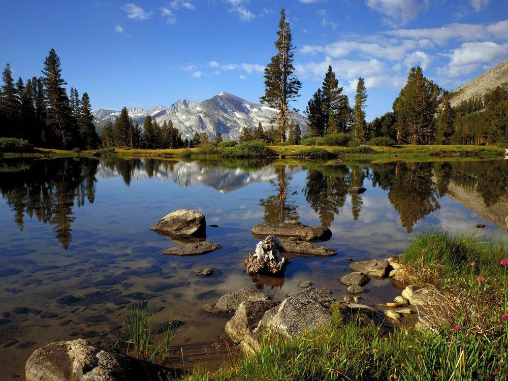 High_Country_Near_Tioga_Pass_Yosemite_National_Park_California.jpg