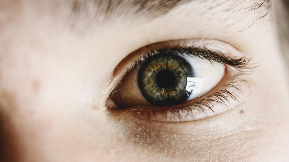 Blind Spot Kenneth Burke Writer