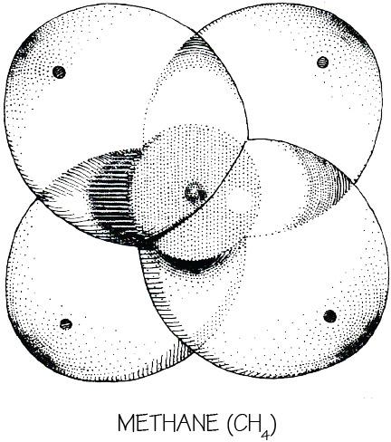 page-mockups45b.jpg
